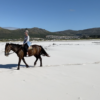 Beach Horse Riding in Cape Town – March Special